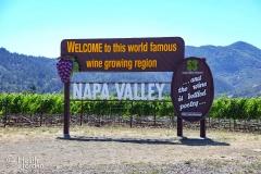 Napa-Valley
