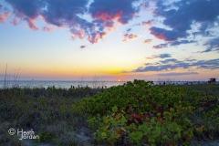 Lido beach sunset